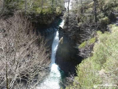 Alto Campoo;Parque Natural Saja-Besaya;cinturon para la espalda taxus cañones del ebro mogarraz fot